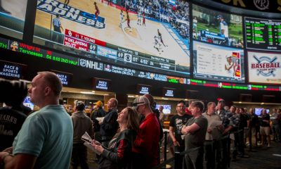 guide to spreads lines totals sports gambling