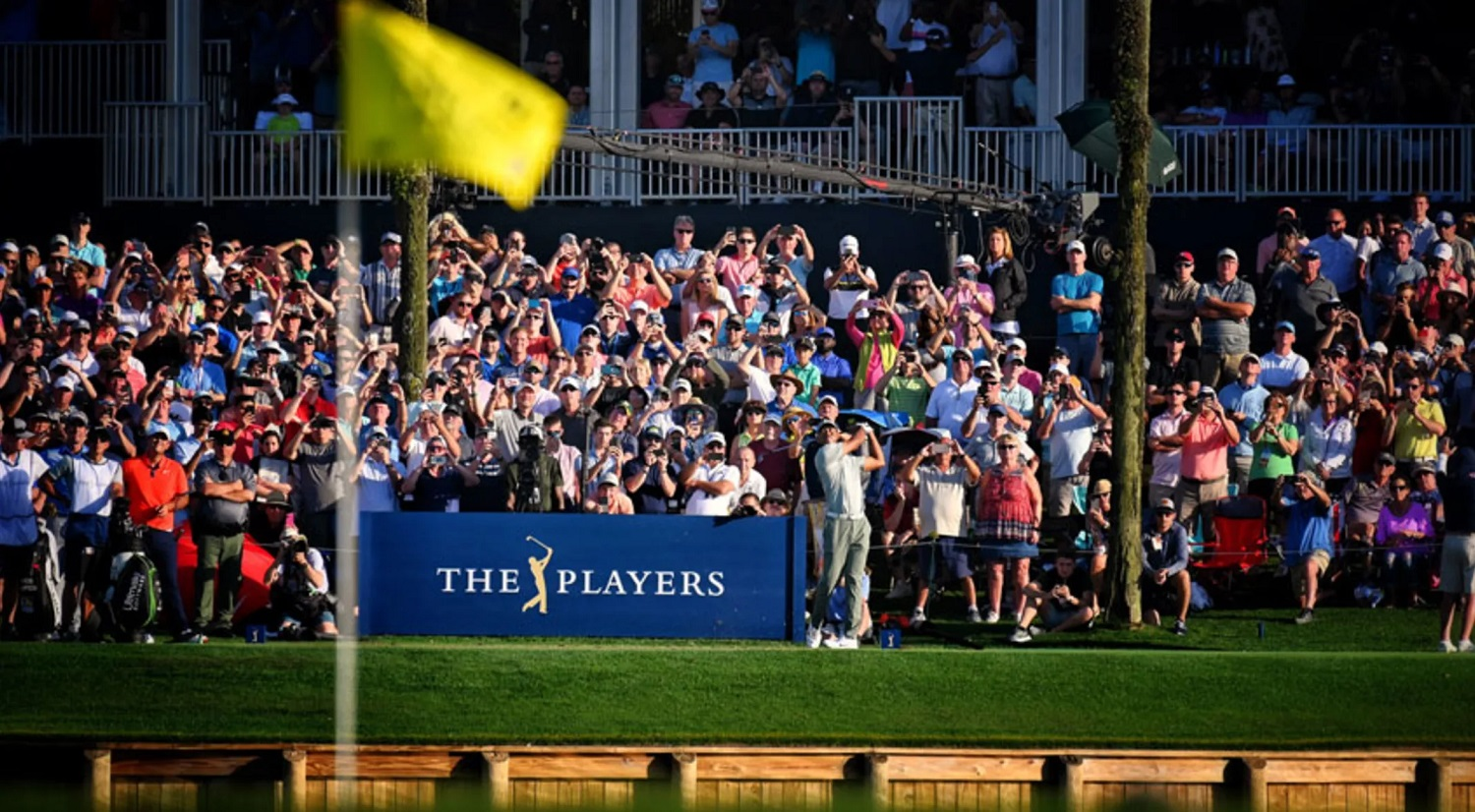 the players betting picks