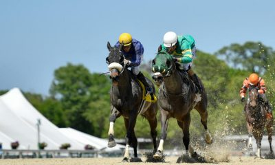 apple blossom handicap