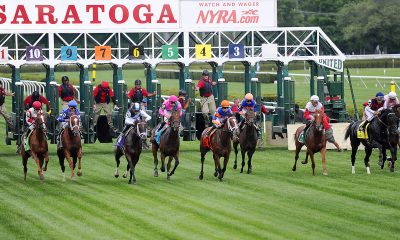 saratoga horse racing picks