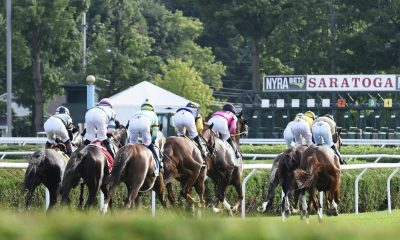 saratoga racings picks